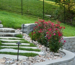 Landscape Project Photo Gallery