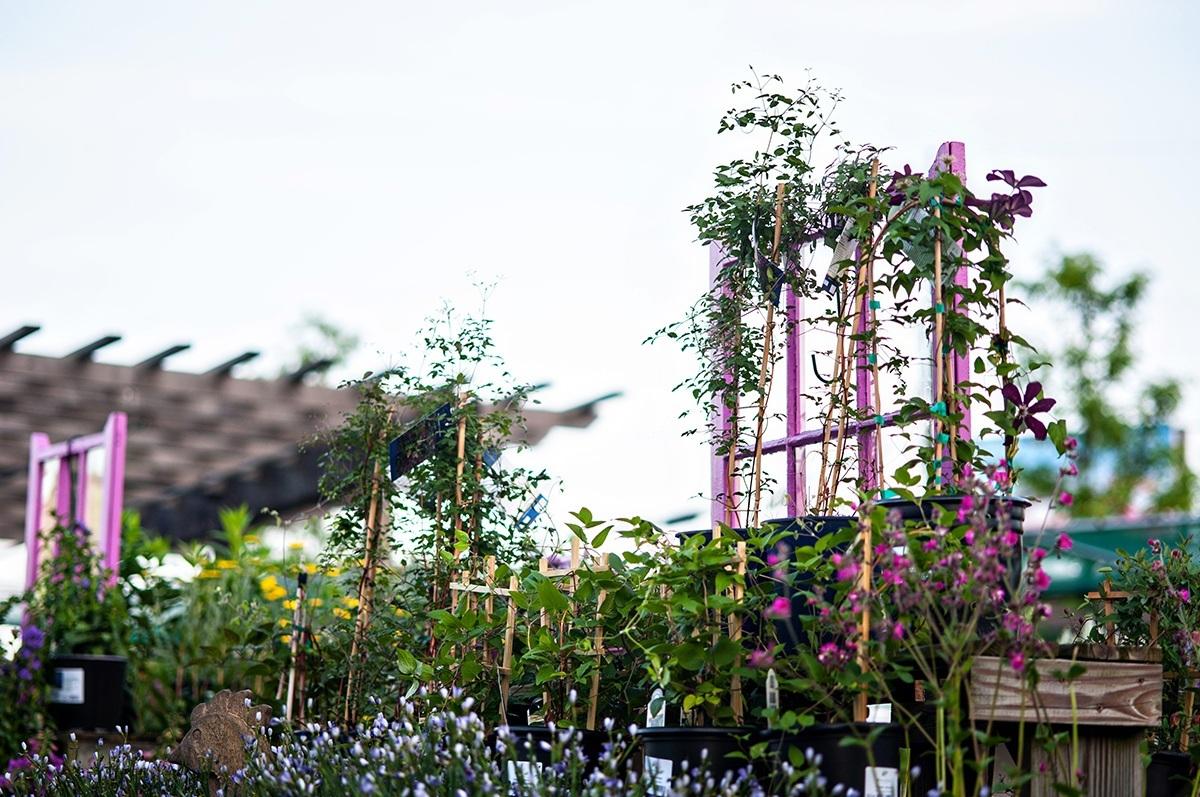 ... Garden Center · Garden Center