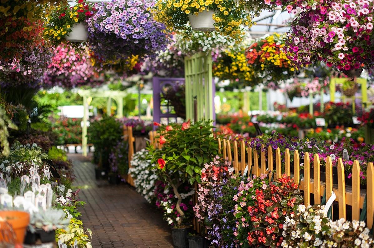 ... Garden Center ...