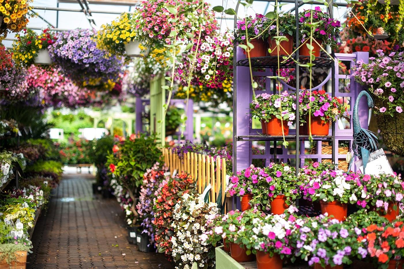 Wonderful White Oak Gardens