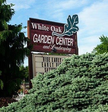 About white oak white oak gardens cincinnati oh for White oak garden center