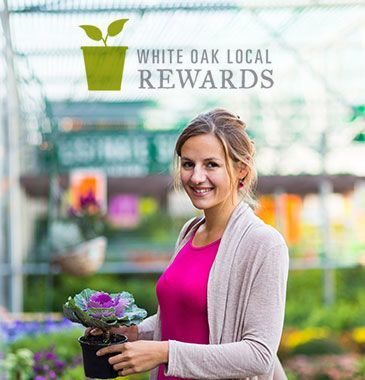 white-oak-garden-center-cincinnati-ohio-shopping-rewards