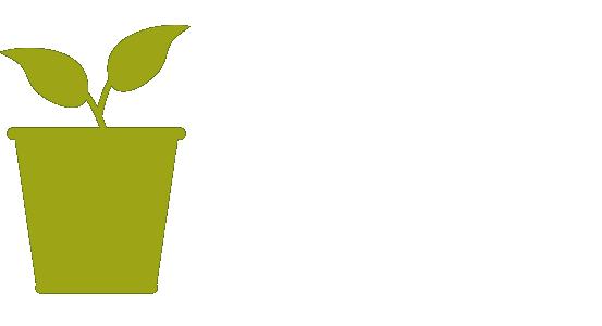 Local Rewards