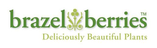 brazelberries_logo_web