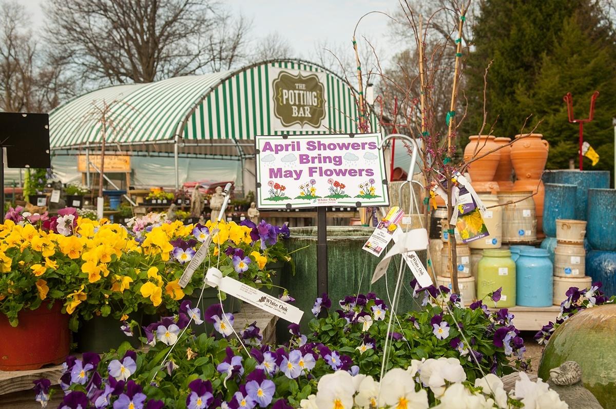 garden center - White Oak Garden Center
