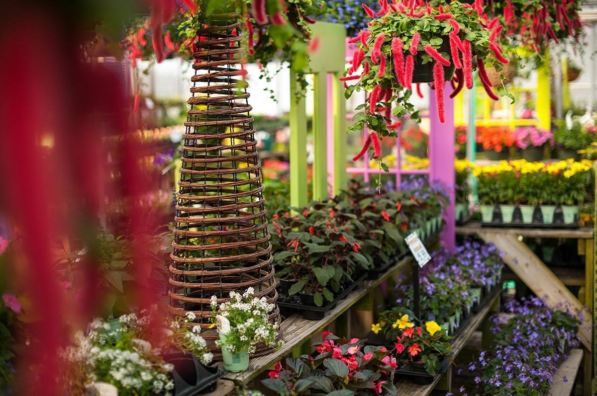 Garden Center | White Oak Gardens | Cincinnati, OH