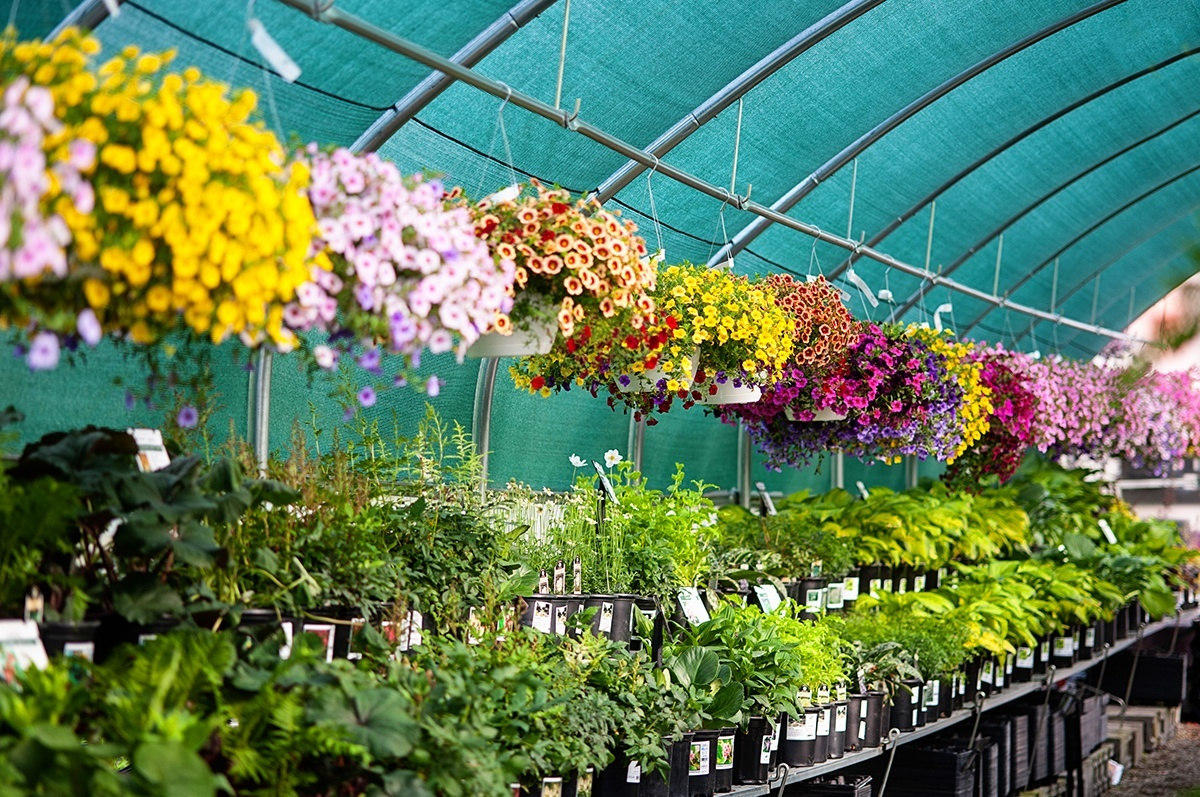 garden center garden center - White Oak Garden Center