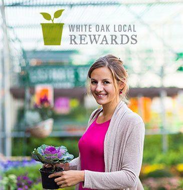 white oak garden center cincinnati ohio shopping rewards - White Oak Garden Center