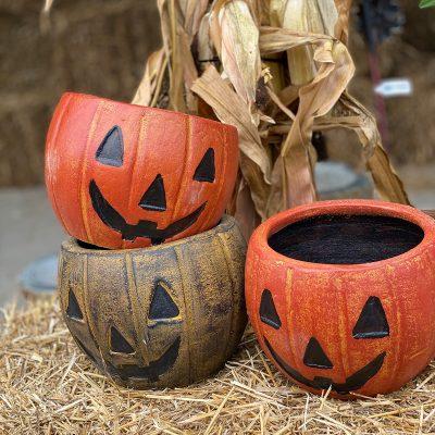 White Oak Pumpkin Pot